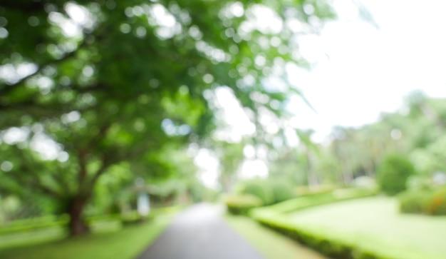 Arrière-plan flou flou d'arbres de jardin en journée ensoleillée