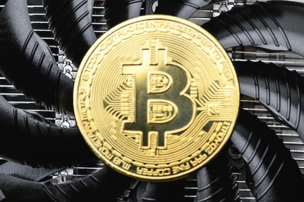 Arrière-plan flou. pièce d'or bitcoin sur une carte vidéo noire, un ventilateur, gros plan. monnaie crypto. concept d'exploitation minière bitcoin.
