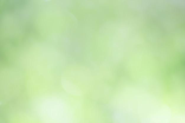 Arrière-plan flou tons verts