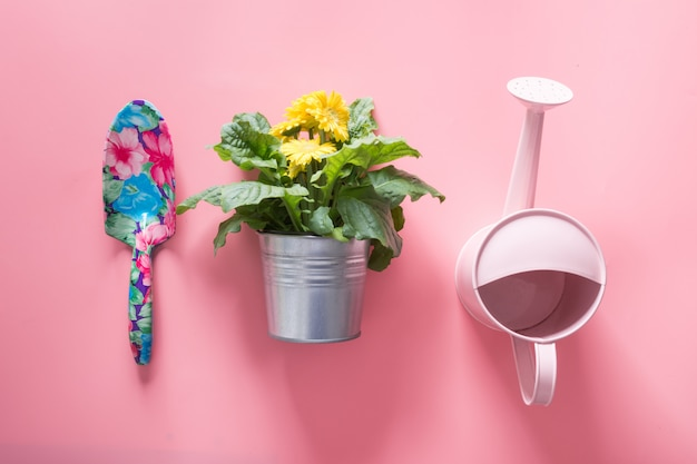 Arrière-plan de jardinage avec arrosoir et fleurs de gerbera