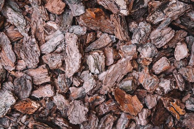 Arrière-plan de morceaux d'écorce de conifères. texture de fond abstrait. vue de dessus.
