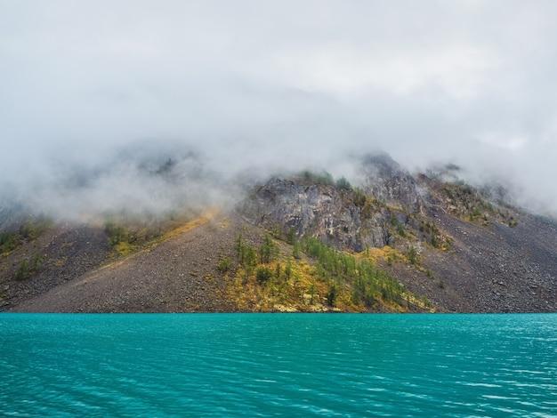 Arrière-plan naturel mystique alpin avec brouillard tôt le matin. silhouettes de sapins pointus à flanc de colline le long du lac de montagne dans un brouillard dense.