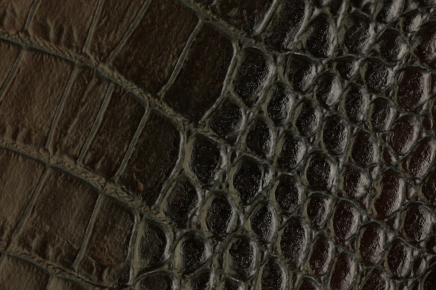 Arrière-plan synthétique en cuir texturé synthétiques macro closeup