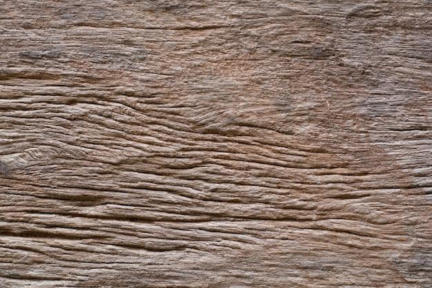 Arrière-plans de textures d'écorce de bois