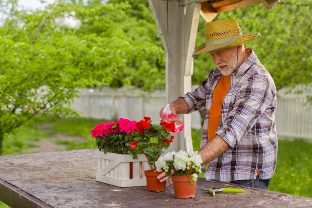 Arroser des fleurs. homme aux cheveux gris portant un chapeau d'été arrosant des fleurs dans des pots à l'extérieur