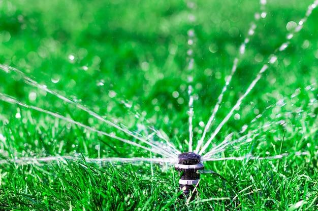 Arroseur automatique d'irrigation arrosant la pelouse verte