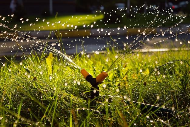 Arroseur automatique de rotation arrosant l'herbe verte dans la cour. flou artistique.