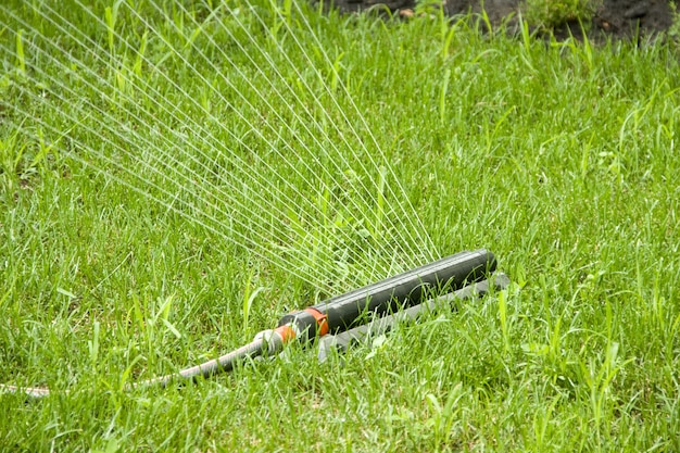 Arroseur d'irrigation arrosant l'herbe sur la pelouse