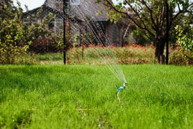 L'arroseur de jardin irrigue le concept de jardinage et d'aménagement paysager de la pelouse