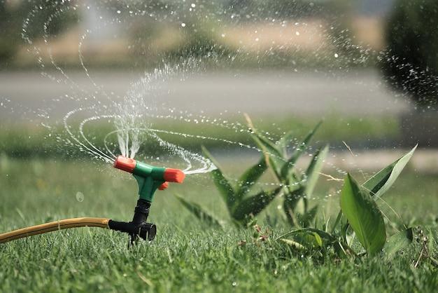 Arroseur de pelouse. irrigation de l'herbe. arrosage.