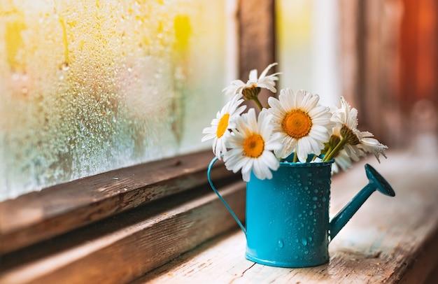 Arrosoir bleu décoratif vase avec des marguerites blanches de fleurs sauvages sur le village
