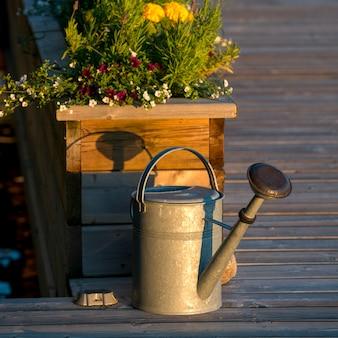 Arrosoir avec des plantes à fleurs, lake of the woods, ontario, canada