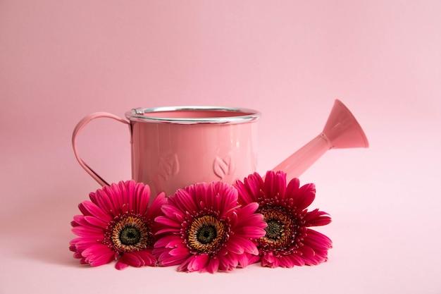 Arrosoir rose vide avec trois fleurs de gerberas rouges