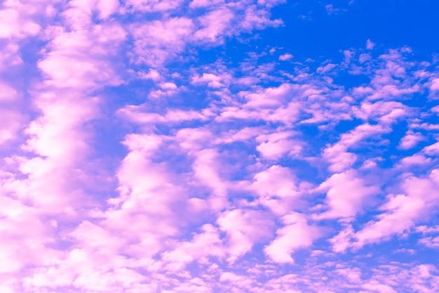Art de la nature détail ciel rose
