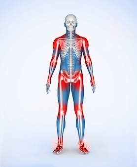 Articulations rouges d'un corps squelette numérique bleu