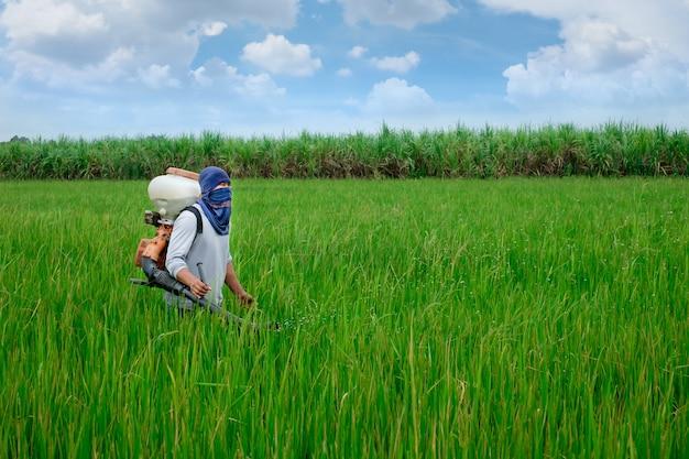 Asiatique fermier thaïlandais aux engrais chimiques equipement aux champs