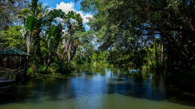 Asie du sud-est, attractions touristiques, malaisie, bornéo, sabah, sandakan, rivières intérieures