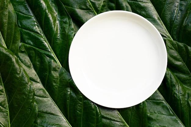 Assiette en céramique blanche vide sur fond de feuilles de noni ou morinda citrifolia. vue de dessus
