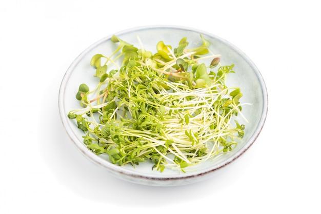 Assiette en céramique avec des germes micro-verts de radis et de cresson isolé sur fond blanc. vue de côté.
