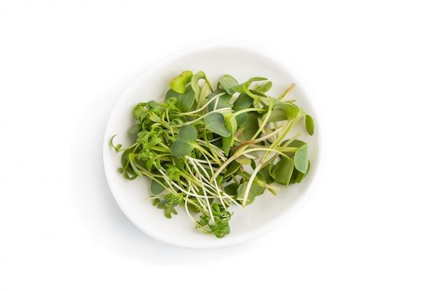 Assiette en céramique avec des germes micro-verts de radis et de cresson isolé sur fond blanc. vue de dessus.