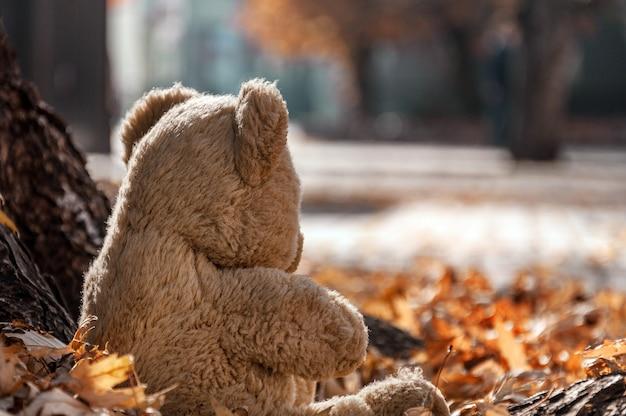 Assis sous un arbre au feuillage tombé, un ours en peluche regarde la ville d'automne.