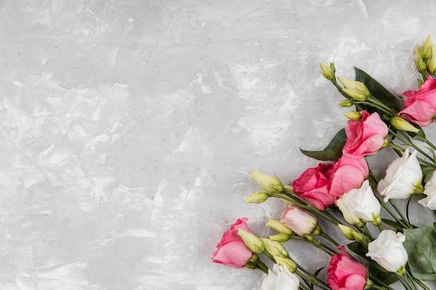 Assortiment de belles roses avec espace copie
