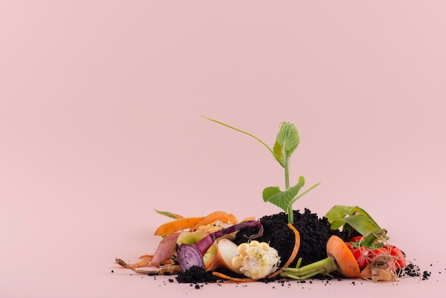 Assortiment de compost fait de nourriture pourrie avec espace de copie