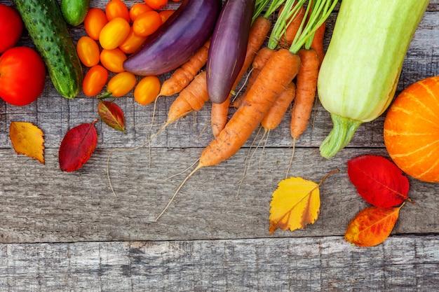 Assortiment de différents légumes biologiques frais à la campagne