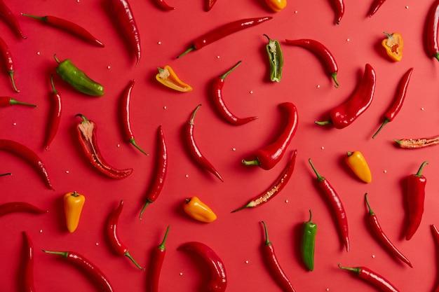 Assortiment de divers piments colorés sur fond rouge. ingrédient extrêmement chaud pour assaisonner ou préparer des plats épicés. légumes mexicains frais et leurs graines pour faire de la sauce ou de la poudre