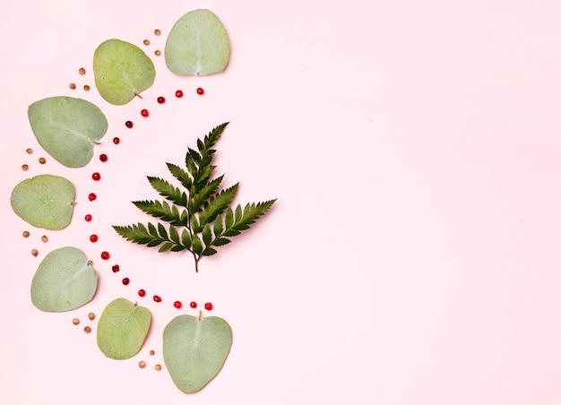 Assortiment de feuilles vertes avec espace copie