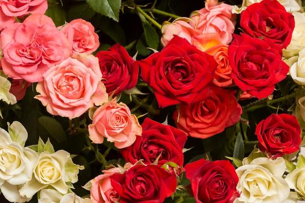 Assortiment de fond de belles fleurs