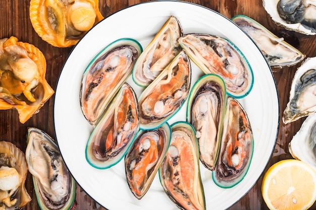 Assortiment de moules et huîtres crustacés