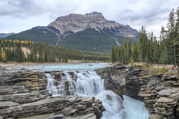 Athabasca falls est une chute d'eau dans le parc national jasper alberta canada