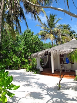 Atoll d'ari nord, l'hôtel aux maldives, océan indien