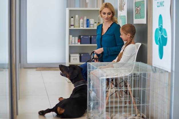 En attente dans la file d'attente chez le vétérinaire