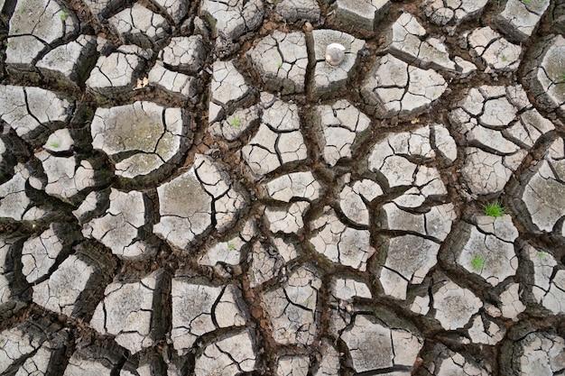 Atterrir avec un sol sec et fissuré à cause de la sécheresse du réchauffement climatique.