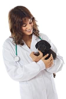 Attractive femme vétérinaire sur un fond blanc