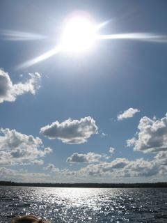 Au bord du lac, la nature