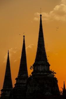 Au sommet de la pagode, le temple phra si sanphet dans la soirée, les oiseaux volent vers le nid à phra nakhon si ayutthaya, en thaïlande.