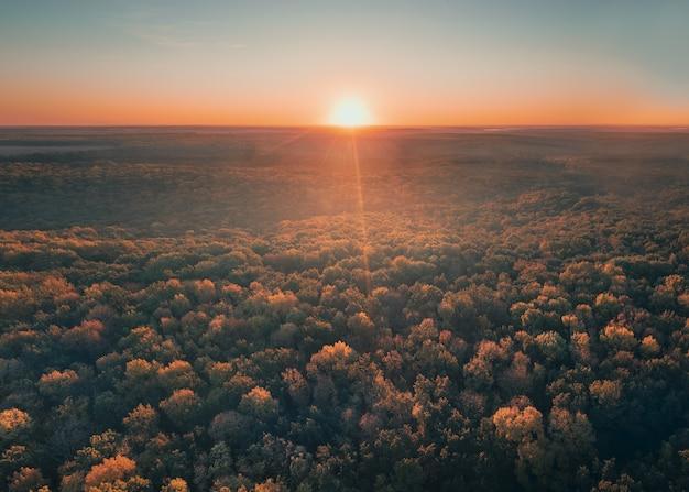 L'aube sur la forêt d'automne