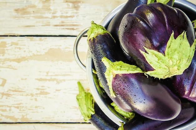 Aubergine. aliments. mise au point sélective. nourriture de jardin nature.