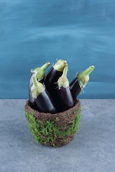 Aubergines fraîches mûres sur vase de jardin.
