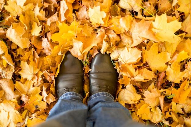 Automne, automne, feuilles, jambes et chaussures. image conceptuelle des jambes en bottes sur les feuilles d'automne. chaussures pieds marchant dans la nature