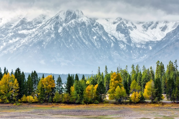 L'automne aux grands tétons