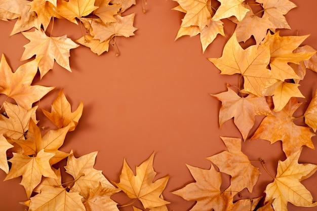 L'automne chute dired feuilles frontière gloire sur brun