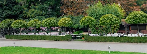 Automne dans les arbres du parc café réverbère dans le parc belle journée ensoleillée bel aménagement paysager au parc