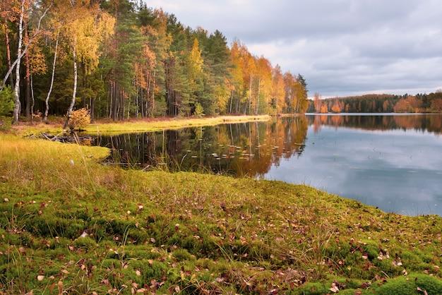 L'automne dans la forêt du nord, sur le lac par temps chaud et ensoleillé