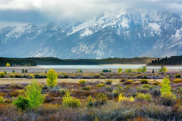 Automne dans le parc national de grand teton