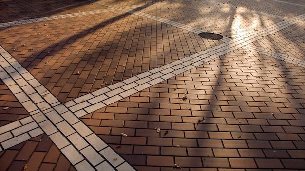 L'automne du trottoir coloré de la ville avec de longues ombres d'arbres nus et des feuilles mortes