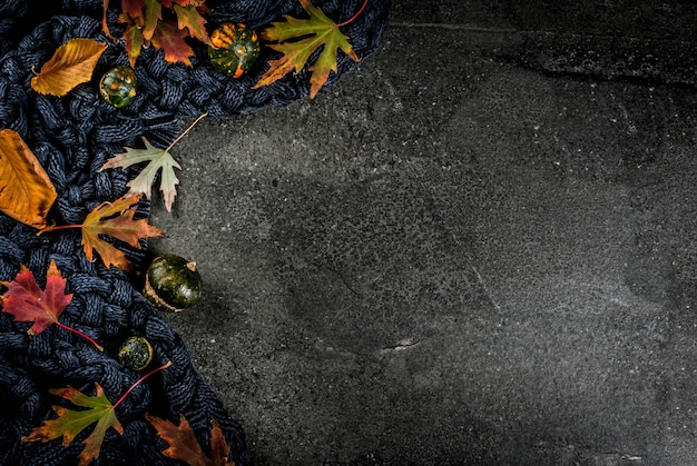 Automne fond de pierre sombre avec des feuilles d'automne rouge et jaune pull chaud ou couverture et petites citrouilles, vue de dessus copie espace